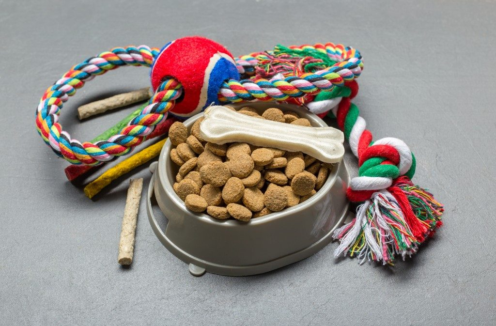 Dog food and toy on a grey surface