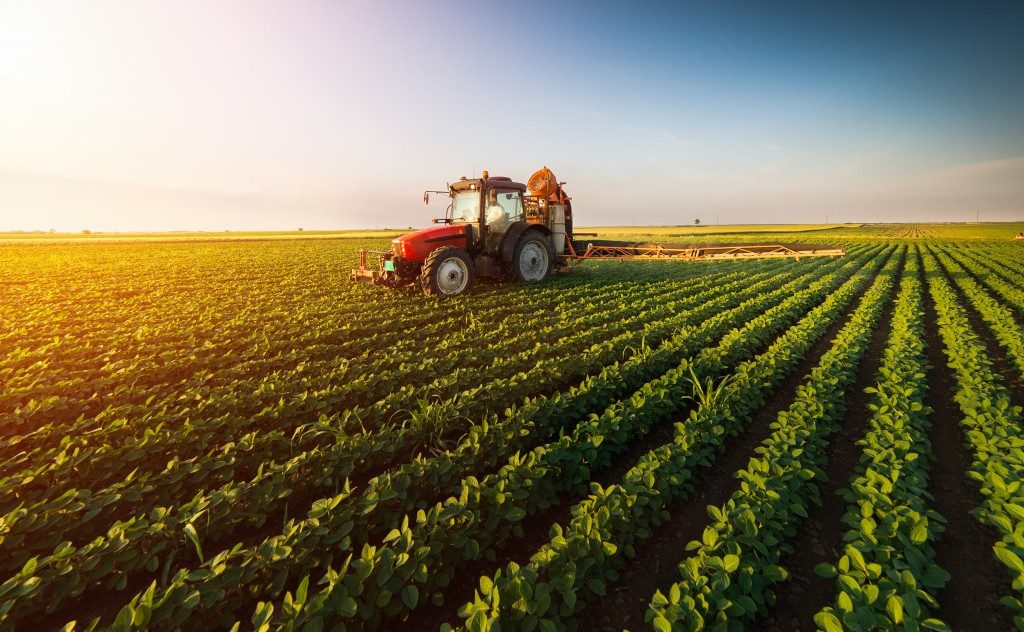 Tractor spraying pesticide in the farm