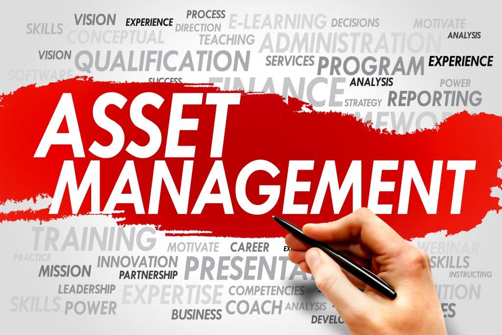 asset manager text
