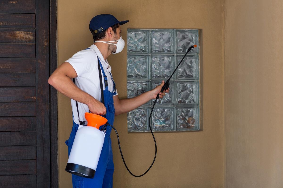 spraying anti pesticide