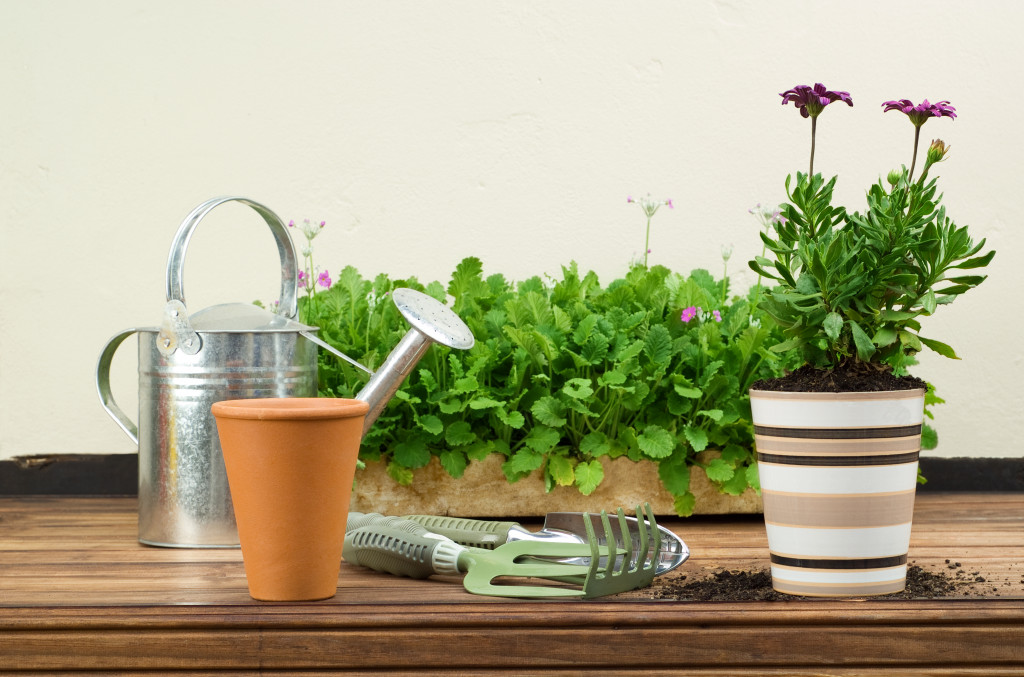 Flower Pots with Gardening Tools and Watering Can Displayed on Wooden Table